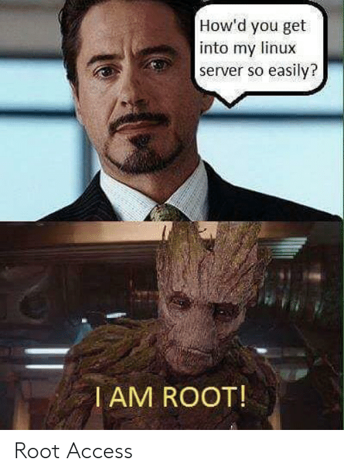 Access, Linux, and Server: How'd you get  into my linux  server so easily?  I AM ROOT! Root Access