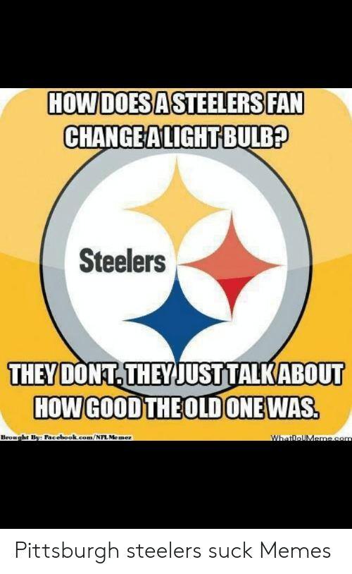 steelers-suck-picture