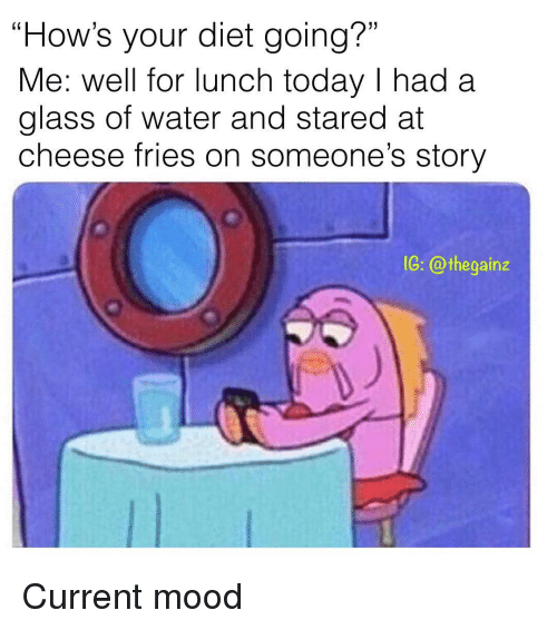 "Memes, Mood, and Today: ""How's your diet going?""  Me: well for lunch today I had a  glass of water and stared at  cheese fries on someone's story  1G: @thegainz Current mood"