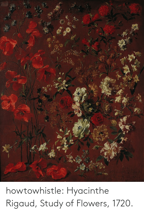 Flowers: howtowhistle:  Hyacinthe Rigaud, Study of Flowers, 1720.