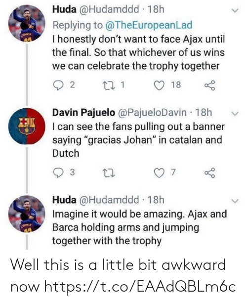 """Memes, Awkward, and Amazing: Huda @Hudamddd 18h  Replying to @TheEuropeanLad  I honestly don't want to face Ajax until  the final. So that whichever of us wins  we can celebrate the trophy together  Davin Pajuelo @PajueloDavin 18h  I can see the fans pulling out a banner  saying """"gracias Johan"""" in catalan and  Dutch  7  Huda @Hudamddd 18h  Imagine it would be amazing. Ajax and  Barca holding arms and jumping  together with the trophy Well this is a little bit awkward now https://t.co/EAAdQBLm6c"""