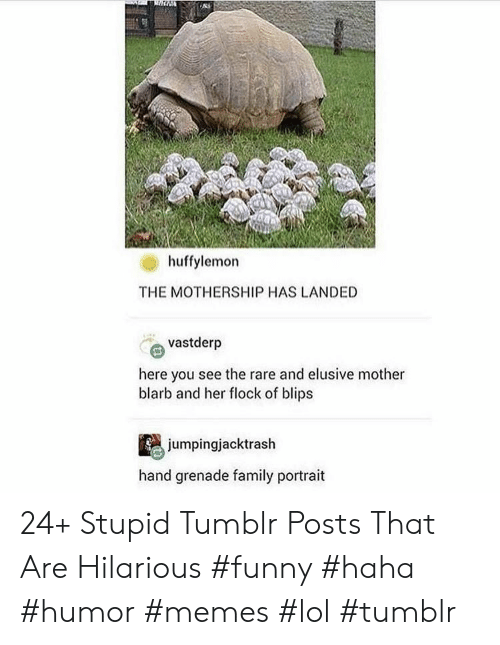 Family, Funny, and Lol: huffylemon  THE MOTHERSHIP HAS LANDED  vastderp  here you see the rare and elusive mother  blarb and her flock of blips  jumpingjacktrash  hand grenade family portrait 24+ Stupid Tumblr Posts That Are Hilarious #funny #haha #humor #memes #lol #tumblr