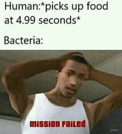 Food, Memes, and 🤖: Human:*picks up food  at 4.99 seconds*  Bacteria:  mission FaiLed