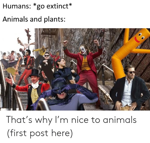 Extinct: Humans: *go extinct*  Animals and plants: That's why I'm nice to animals (first post here)