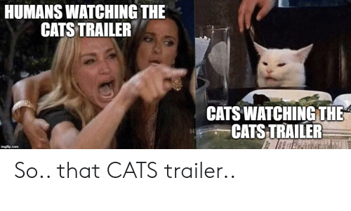 Cats, Com, and Imgflip: HUMANS WATCHING THE  CATS TRAILER  CATS WATCHING THE  CATS TRAILER  imgflip.com So.. that CATS trailer..