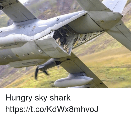 Hungry, Shark, and Faces-In-Things: Hungry sky shark https://t.co/KdWx8mhvoJ