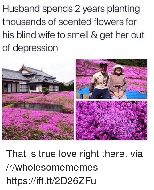 Love, Smell, and True: Husband spends 2 years planting  thousands of scented flowers for  his blind wife to smell & get her out  of depression That is true love right there. via /r/wholesomememes https://ift.tt/2D26ZFu