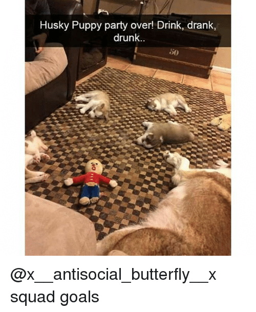 Husky Puppy: Husky Puppy party over!  Drink, drank,  drunk @x__antisocial_butterfly__x squad goals