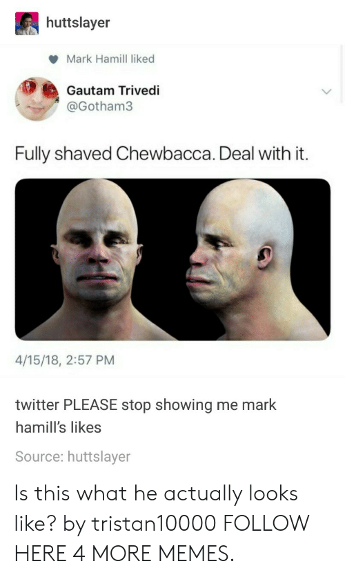 Chewbacca, Dank, and Mark Hamill: huttslayer  Mark Hamill liked  Gautam Trivedi  @Gotham3  Fully shaved Chewbacca. Deal with it.  4/15/18, 2:57 PM  twitter PLEASE stop showing me mark  hamill's likes  Source: huttslayer Is this what he actually looks like? by tristan10000 FOLLOW HERE 4 MORE MEMES.