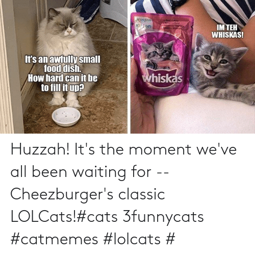 Waiting...: Huzzah! It's the moment we've all been waiting for -- Cheezburger's classic LOLCats!#cats 3funnycats #catmemes #lolcats #