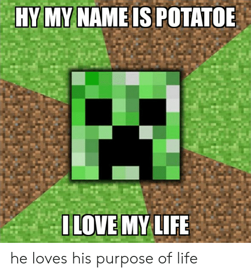 Life, Name, and My Name Is: HY MY NAME IS POTATOE  ILOVE MY LIFE he loves his purpose of life