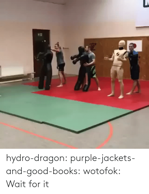 media: hydro-dragon: purple-jackets-and-good-books:  wotofok:  Wait for it