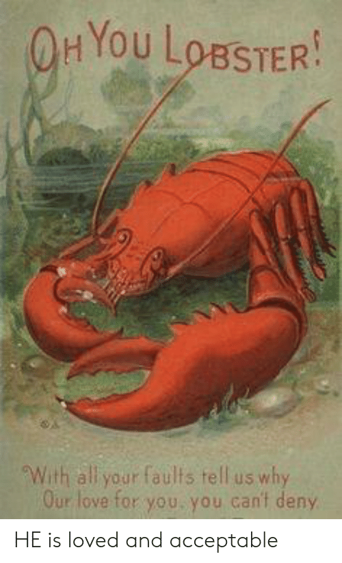 Hyou: HYou LoBSTER  With all your faults tell us why  Our love for you, you can't deny HE is loved and acceptable