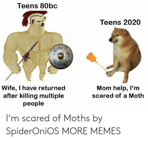 scared: I'm scared of Moths by SpiderOniOS MORE MEMES