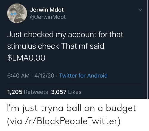 R Blackpeopletwitter: I'm just tryna ball on a budget (via /r/BlackPeopleTwitter)