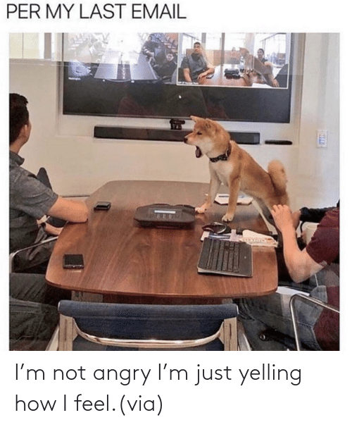 How I: I'm not angry I'm just yelling how I feel.(via)