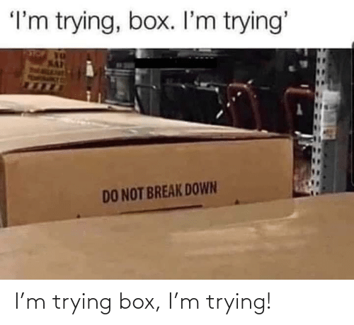box: I'm trying box, I'm trying!