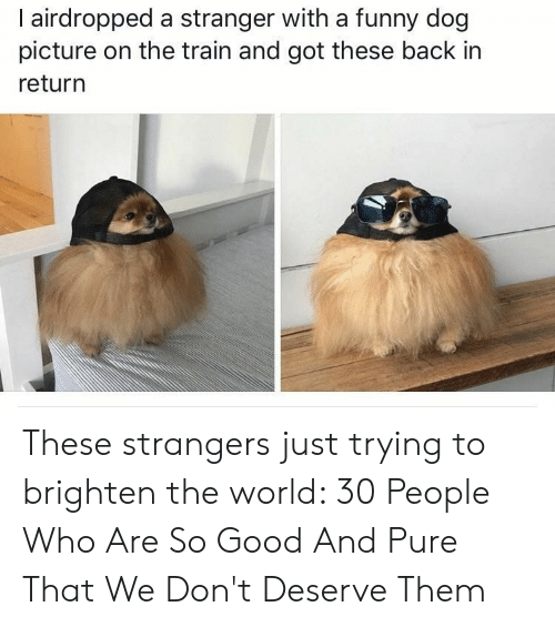Funny, Good, and Train: I airdropped a stranger with a funny dog  picture on the train and got these back in  return These strangers just trying to brighten the world: 30 People Who Are So Good And Pure That We Don't Deserve Them