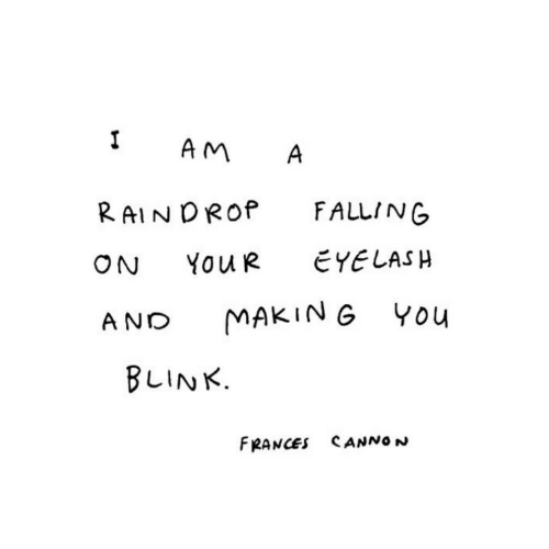 Blink, You, and Making: I  AM  A  FALLING  RAINDROP  EYELASH  YOUR  ON  MAKING YOu  AND  BLINK.  FRANCES CANNO N