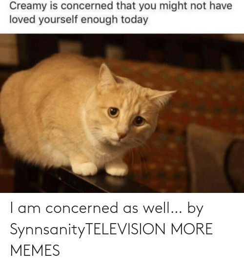 as well: I am concerned as well… by SynnsanityTELEVISION MORE MEMES