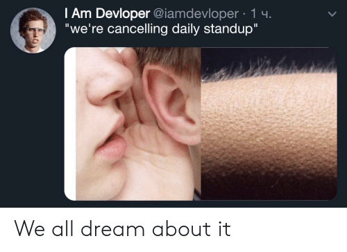 "Standup, Dream, and All: I Am Devloper @iamdevloper 1 4  ""we're cancelling daily standup"" We all dream about it"