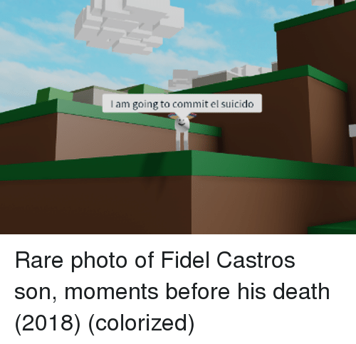 Death, Fidel Castro, and Rare: I am going to commit el suicido Rare photo of Fidel Castros son, moments before his death (2018) (colorized)