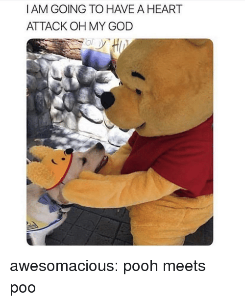 God, Oh My God, and Tumblr: I AM GOING TO HAVE A HEART  ATTACK OH MY GOD awesomacious:  pooh meets poo