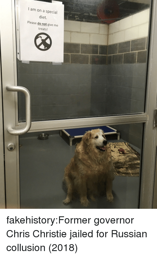 Tumblr, Chris Christie, and Blog: I am on a special  diet.  Please do not give me  treats! fakehistory:Former governor Chris Christie jailed for Russian collusion (2018)