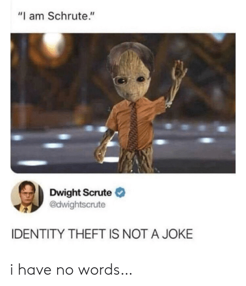 "Theft: ""I am Schrute.""  Dwight Scrute  @dwightscrute  IDENTITY THEFT IS NOT A JOKE i have no words…"