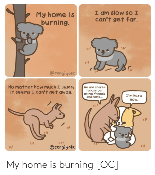 scared: I am slow SO I  can't get far.  My home is  burning.  @corgiyolk  No matter how much I jump,  it seems I can't get away.  We are scared  to lose our  animal friends  and home..  I'm here  now.  ©corgiyolk My home is burning [OC]
