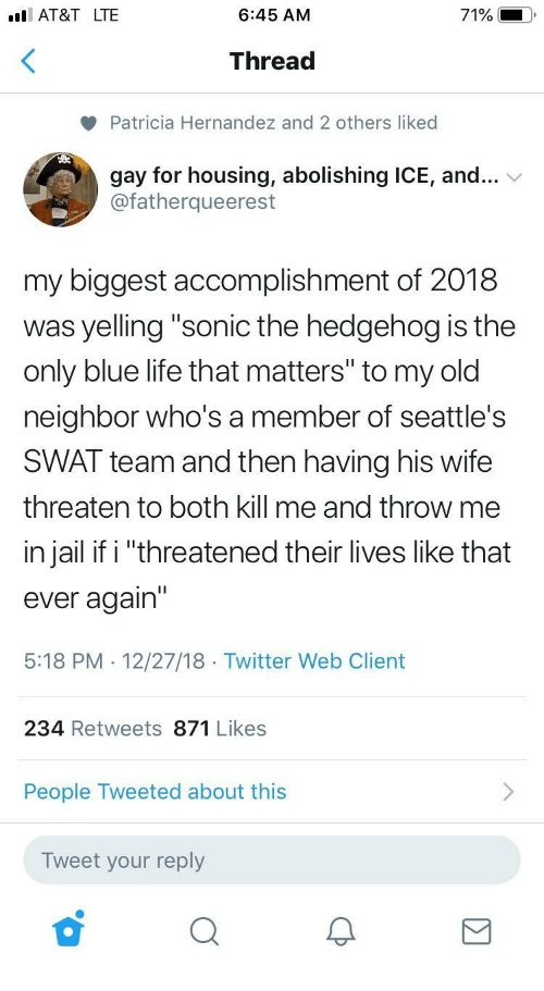 """Jail, Life, and Twitter: I AT&T LTE  6:45 AM  71%  Thread  Patricia Hernandez and 2 others liked  gay for housing, abolishing ICE, and...  @fatherqueerest  my biggest accomplishment of 2018  was yelling """"sonic the hedgehog is the  only blue life that matters"""" to my old  neighbor who's a member of seattle's  SWAT team and then having his wife  threaten to both kill me and throw me  in jail if i """"threatened their lives like that  ever again'""""  5:18 PM . 12/27/18 Twitter Web Client  234 Retweets 871 Likes  People Tweeted about this  Tweet your reply"""