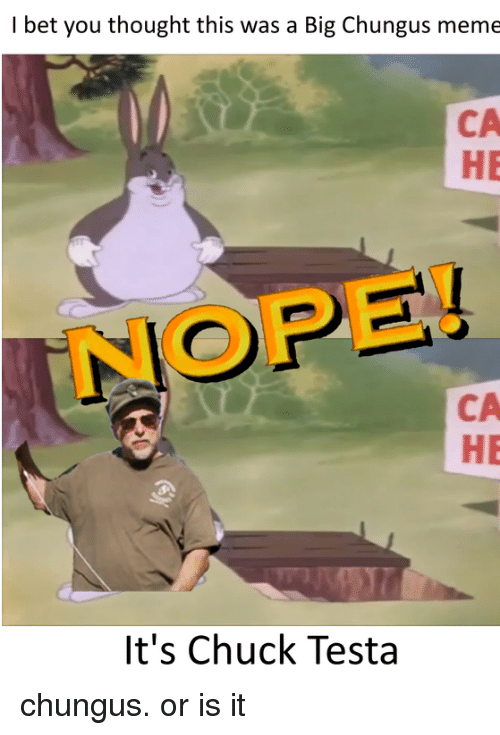 I Bet You Thought This Was A Big Chungus Meme Ca He Nope Ca He It S