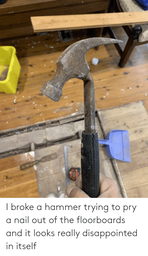 out: I broke a hammer trying to pry a nail out of the floorboards and it looks really disappointed in itself