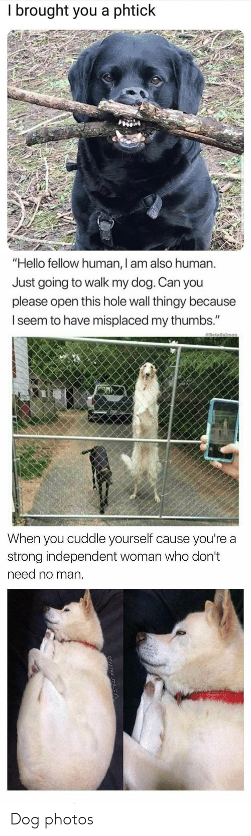 "Hello, Strong, and Dog: I brought you a phtick   ""Hello fellow human, I am also human.  Just going to walk my dog. Can you  please open this hole wall thingy because  I seem to have misplaced my thumbs.""   When you cuddle yourself cause you're a  strong independent woman who don't  need no man Dog photos"