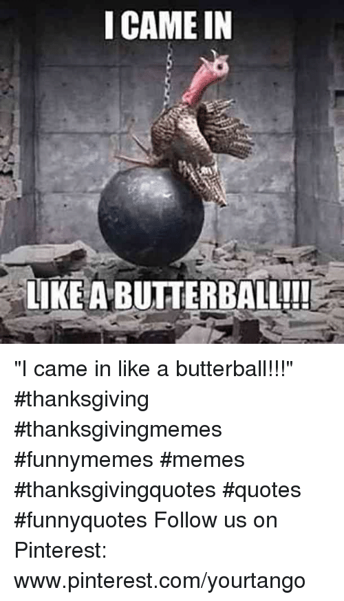 "Memes, Thanksgiving, and Pinterest: I CAME IN  LIKE A BUTTERBALL!! ""I came in like a butterball!!!"" #thanksgiving #thanksgivingmemes #funnymemes #memes #thanksgivingquotes #quotes #funnyquotes Follow us on Pinterest: www.pinterest.com/yourtango"