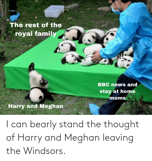 Conservative Memes: I can bearly stand the thought of Harry and Meghan leaving the Windsors.