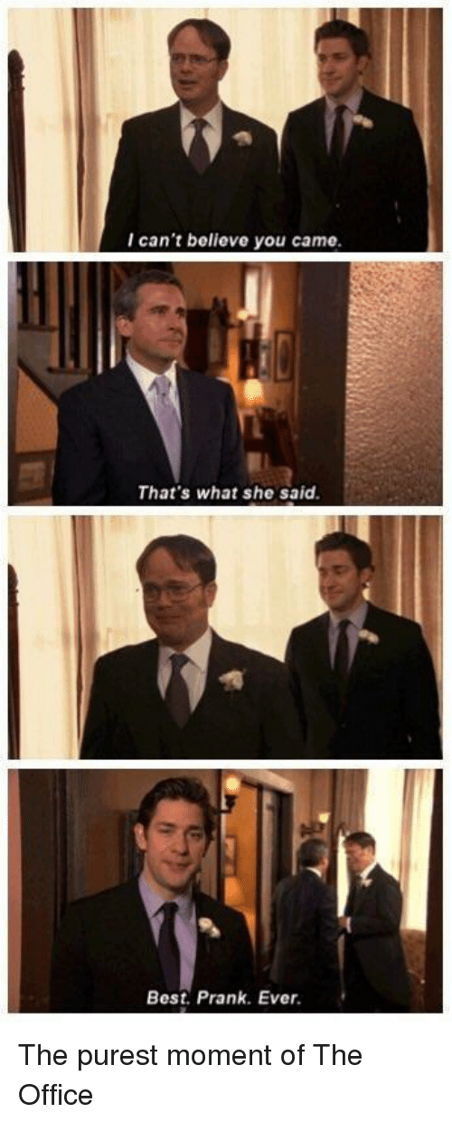 Prank, The Office, and Best: I can't believe you came  That's what she said  Best. Prank. Ever The purest moment of The Office