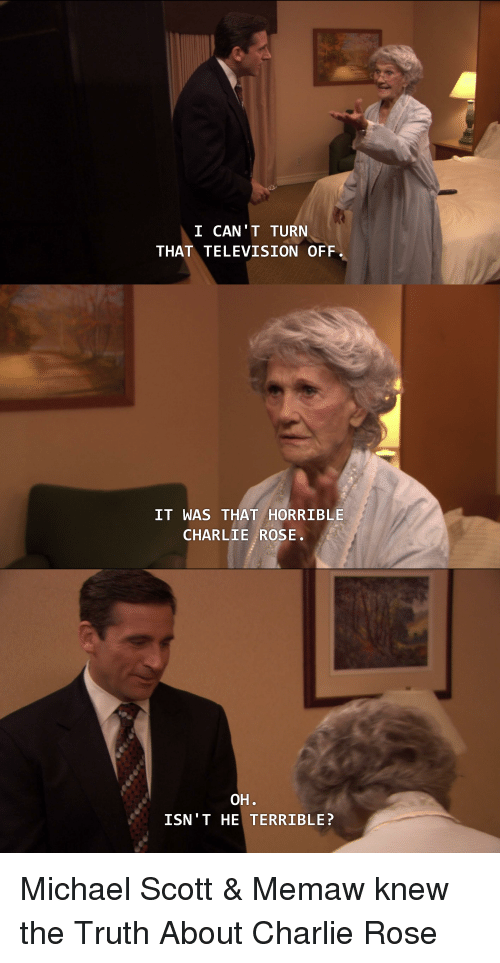 Charlie, Michael Scott, and The Office: I CAN'T TURN  THAT TELEVISION OFF  IT WAS THAT HORRIBLE  CHARLIE ROSE.  OH  ISN'T HE TERRIBLE?