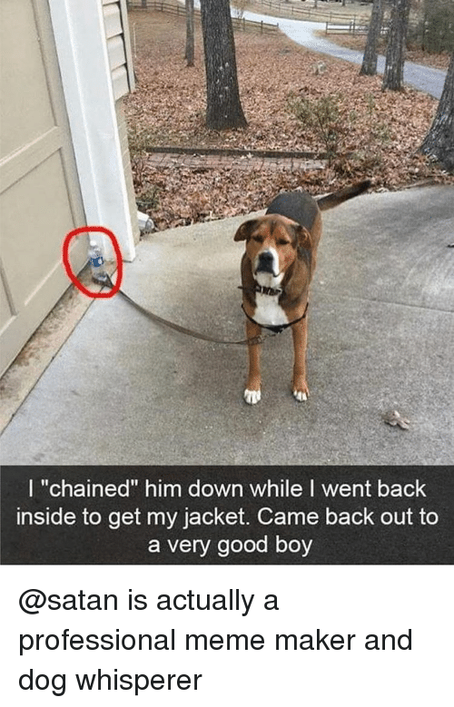 "Funny, Girl Memes, and Maker: I ""chained"" him down while I went back  inside to get my jacket. Came back out to  a very good boy @satan is actually a professional meme maker and dog whisperer"