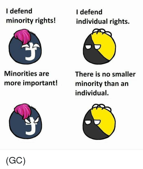 Memes, 🤖, and More: I defend  minority rights!  I defend  individual rights.  Minorities are  There is no smaller  minority than an  individual.  more important! (GC)