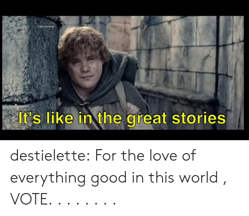 Love, Tumblr, and Blog: i Destielette  It's like in the great stories destielette:  For the love of everything good in this world , VOTE. . . . . . . .