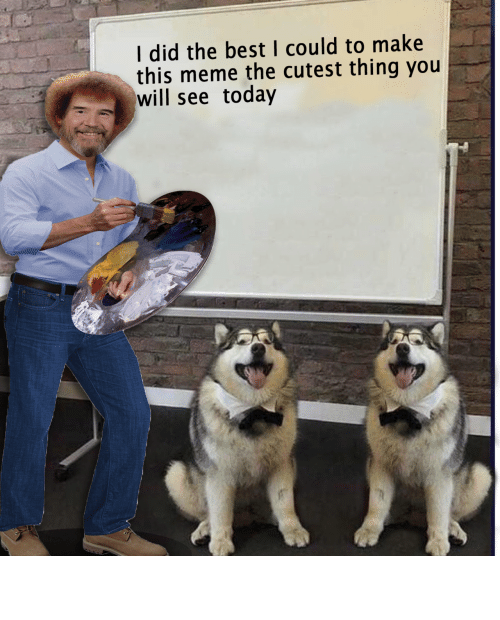 Meme, Best, and Today: I did the best I could to make  this meme the cutest thing you  wisee today Wholesome