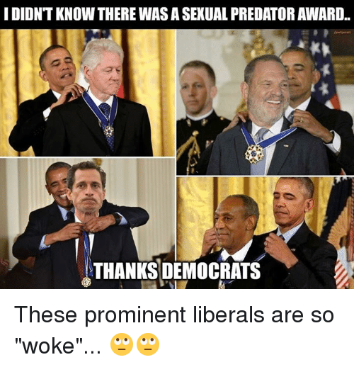 "Predator, Thanks, and Prominent: I DIDNT KNOW THERE WAS A SEXUAL PREDATOR AWARD..  THANKS DEMOCRATS These prominent liberals are so ""woke""... 🙄🙄"