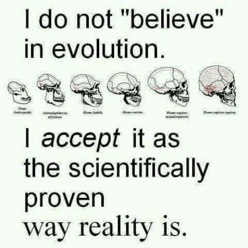 "Evolution, Reality, and Believe: I do not ""believe""  in evolution  I accept it as  the scientifically  proven  way reality is."