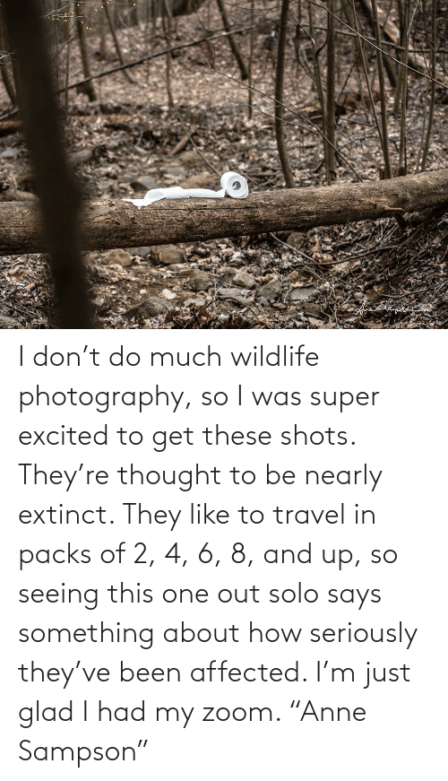 "Travel: I don't do much wildlife photography, so I was super excited to get these shots. They're thought to be nearly extinct. They like to travel in packs of 2, 4, 6, 8, and up, so seeing this one out solo says something about how seriously they've been affected. I'm just glad I had my zoom. ""Anne Sampson"""