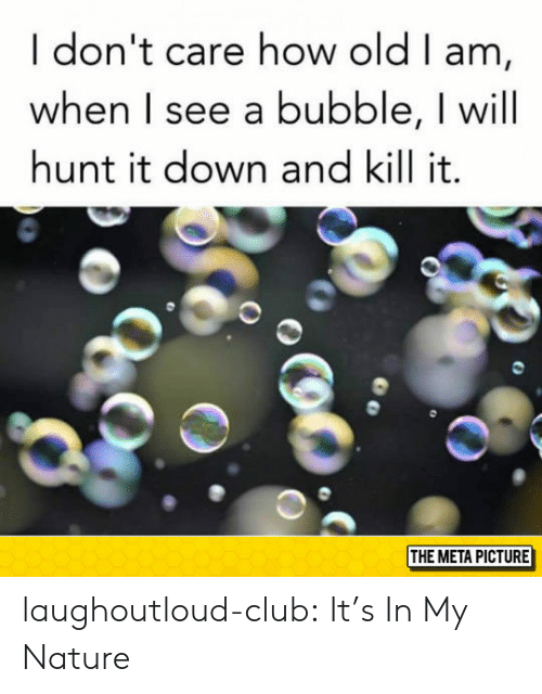 Club, Tumblr, and Blog: I don't care how old I am,  when I see a bubble, I will  hunt it down and kill it.  THE META PICTURE laughoutloud-club:  It's In My Nature