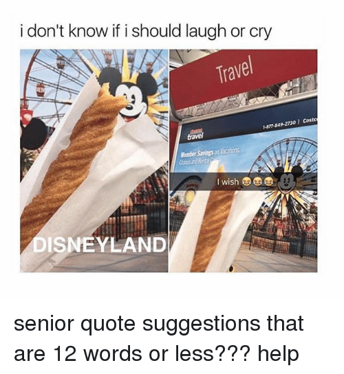 Disneyland, Memes, and Senior Quotes: i don't know if i should laugh or cry  Trave  DISNEYLAND senior quote suggestions that are 12 words or less??? help