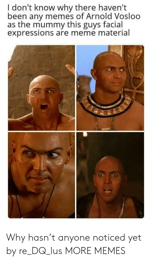 Material: I don't know why there haven't  been any memes of Arnold Vosloo  as the mummy this guys facial  expressions are meme material Why hasn't anyone noticed yet by re_DQ_lus MORE MEMES