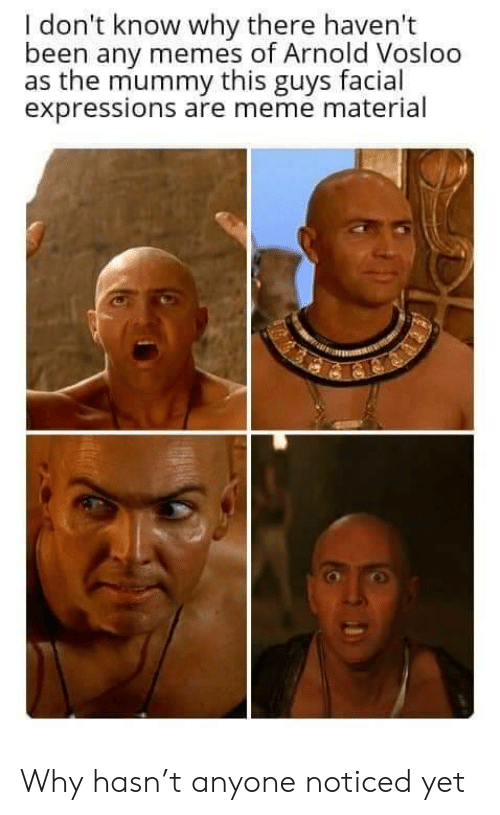 Material: I don't know why there haven't  been any memes of Arnold Vosloo  as the mummy this guys facial  expressions are meme material Why hasn't anyone noticed yet