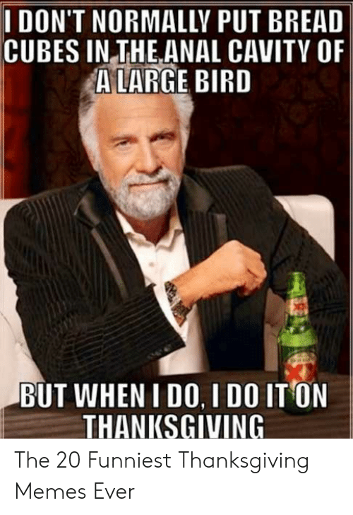 Memes, Thanksgiving, and Anal: I DON'T NORMALLY PUT BREAD  CUBES IN THE ANAL CAVITY OF  ALARGE BIRD  BUT WHEN I DO, I DO IT ON  THANKSGIVING The 20 Funniest Thanksgiving Memes Ever